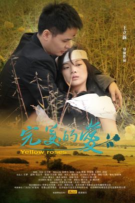 完美的爱( 2011 )