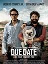 预产期/Due Date(2010)