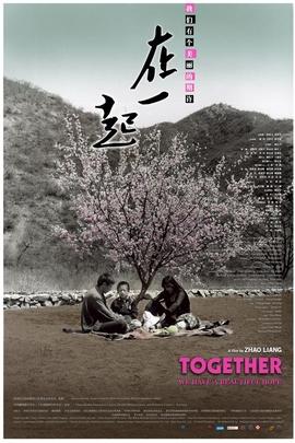 在一起( 2010 )