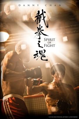 截拳之魂( 2011 )
