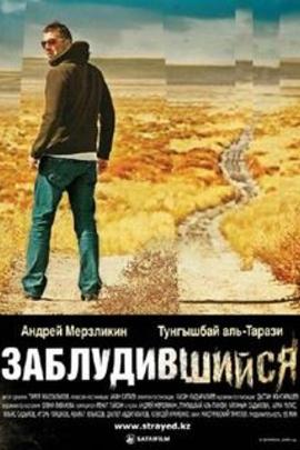 迷路( 2009 )