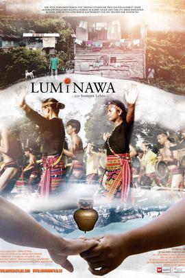 卢米纳瓦( 2010 )