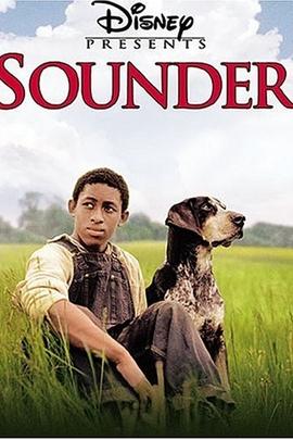 儿子离家时( 2003 )