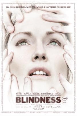 盲流感( 2008 )