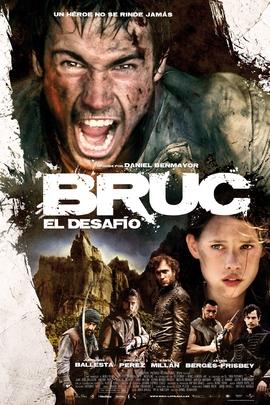 布鲁克( 2010 )