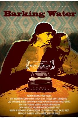 去皮的水( 2009 )