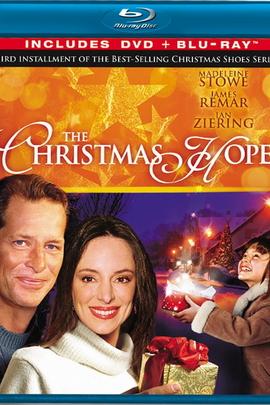 圣诞愿望( 2009 )