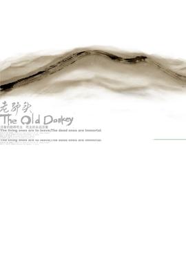老驴头( 2010 )