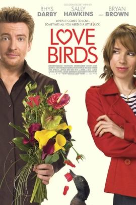 爱情鸟( 2011 )