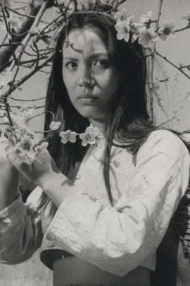 海鸥的梦( 1974 )
