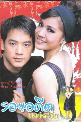 伤痕我心( 2006 )
