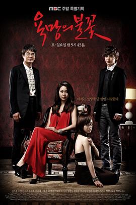 欲望的火花( 2010 )