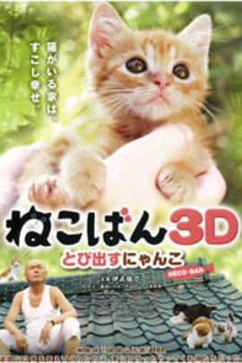 小猫跳出来3D