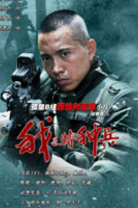我是特种兵( 2011 )