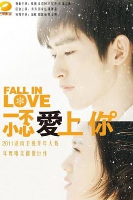 一不小心爱上你( 2011 )