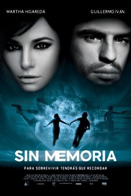 没有记忆( 2010 )