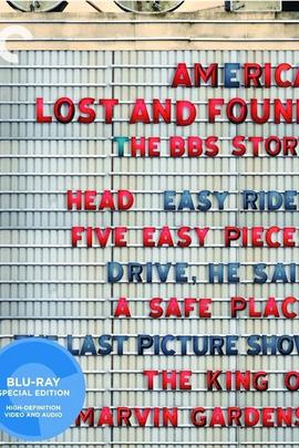 美国失物招领处:BBS的故事