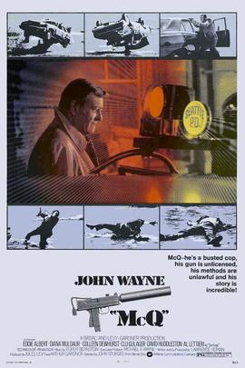 盗毒( 1974 )
