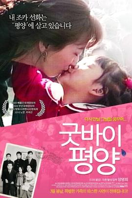 再见,平壤( 2011 )