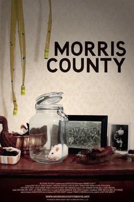 莫里斯郡( 2009 )