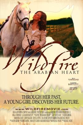 野火:阿拉伯之心