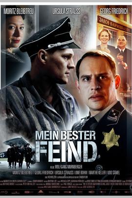 我最好的敌人( 2011 )