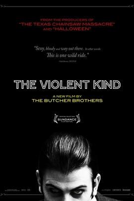 暴力控( 2010 )