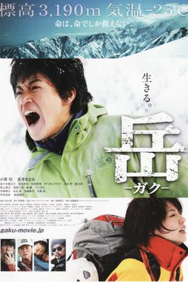 岳( 2011 )