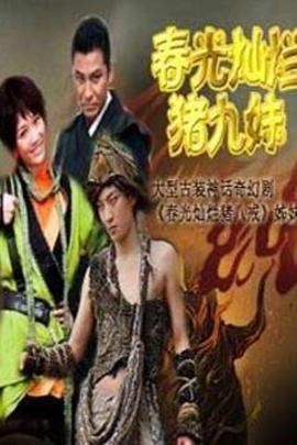 春光灿烂猪九妹( 2011 )