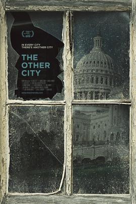 其他城市( 2010 )