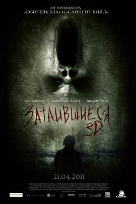 隐藏( 2011 )