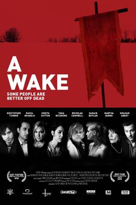 唤醒( 2009 )