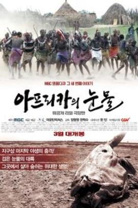 非洲的眼泪( 2011 )