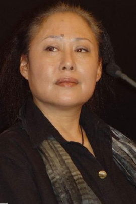 大元王朝( 2011 )