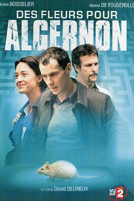 献给阿尔吉侬的花束( 2006 )