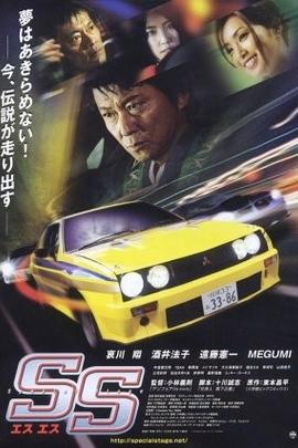 特殊路段( 2008 )