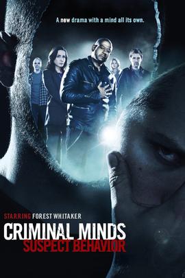 犯罪心理:嫌疑犯行为( 2011 )