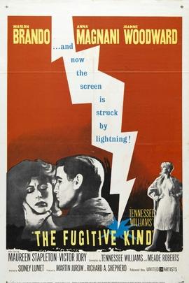 漂泊者( 1960 )