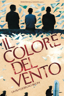 风的颜色( 2010 )