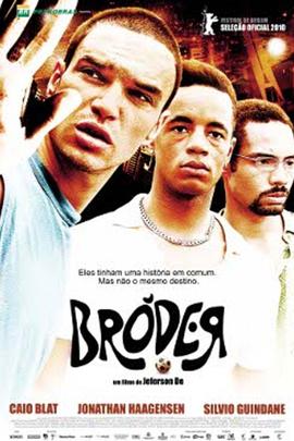 布罗德( 2010 )