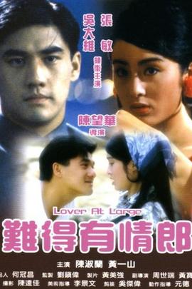 难得有情郎( 1991 )
