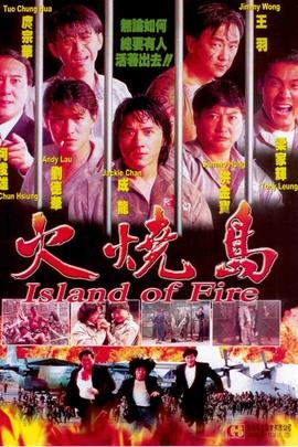 火烧岛( 1990 )