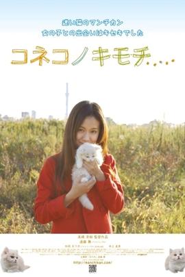 小猫的感觉( 2011 )