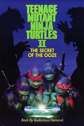 忍者神龟2( 1991 )