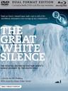 冰川的沉默