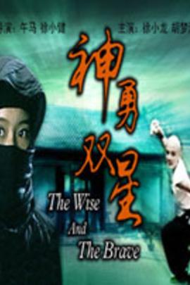 神勇双星( 2005 )