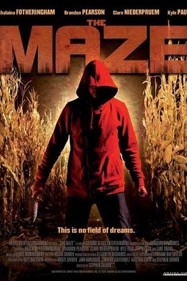 夜迷宫( 2010 )