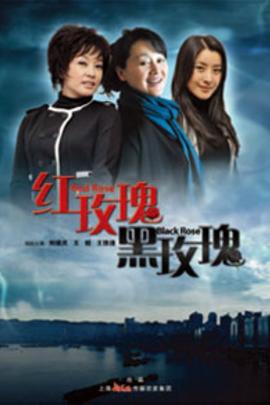 红玫瑰,黑玫瑰( 2011 )