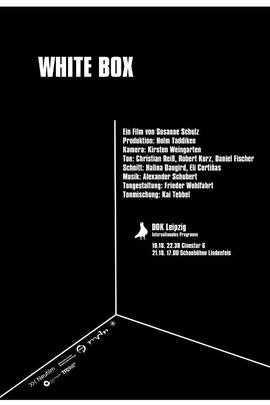 白盒子( 2010 )
