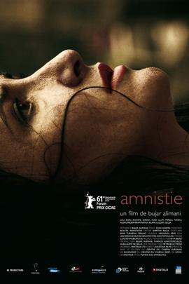 大赦( 2011 )